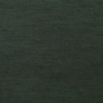 Colibri graphite