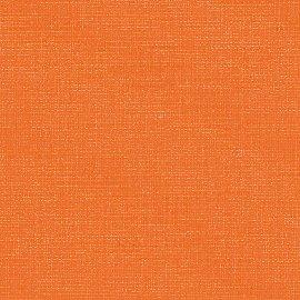goldfish Canoso