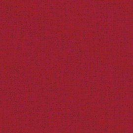 0262 605 ladybird Canoso