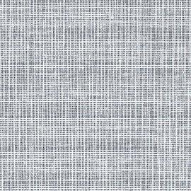 0262 625 penguin Canoso