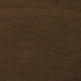 Colibri forest floor