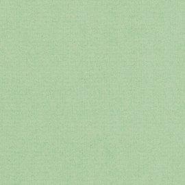 Hellgrün matt g/qm BB
