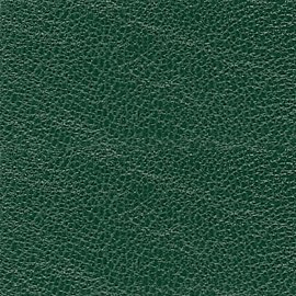 dark green goatskin