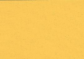 282 007 rapsgelb