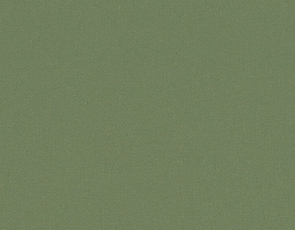290 145 olive