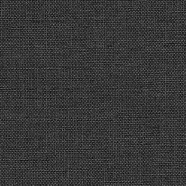 101 876 anthrazit