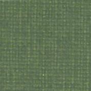 0262 606 grasshopper Canoso