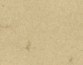 11/1 Chamois 110 g SB 70x100cm