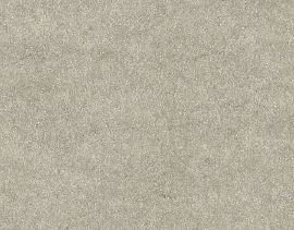 25/1 Hellgrau 110g SB 70x100cm